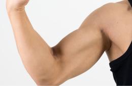 腕の筋肉量の増加