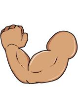 3.腕の筋肉量の増加