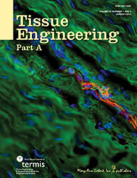 Tissue Engineering Part A Part A. 2012 Jan;18(1-2):157-66